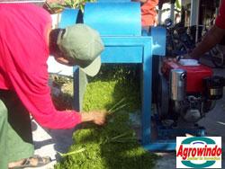 mesin grinder kompos organik 5 tokomesin malang