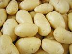 mesin pengupas kentang 1 tokomesin malang