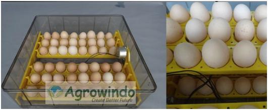 Mesin Penetas Telur 96 Butir Otomatis - AGR-YZ96 2 tokomesin malang
