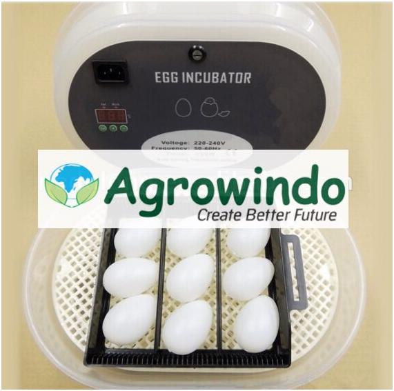 Mesin Tetas Telur 12 Butir Otomatis - AGR-JN12 6 tokomesin malang