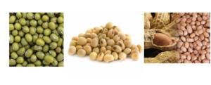 Jual Mesin Pulp Grinder Pembubur Kacang-Kacangan di Malang