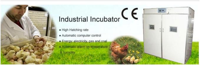 mesin-tetas-telur-industri-264-butir-industrial-incubator-1-tokomesin-malang