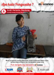 Jual Mesin Pengupas Bawang Putih (BWG180) di Malang